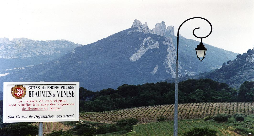Rhone vineyards